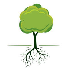 Green tree with roots outline vector