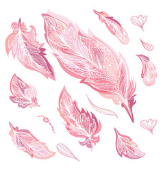 Romantic feathers set vector