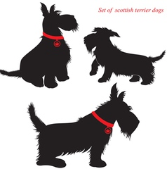 Scottish Terrier dog silhouettes vector image
