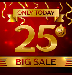 big sale twenty five percent for discount vector image