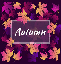 hello autumn leaf background of seamless texture vector image