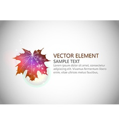 background autumn single leaf text vector image vector image