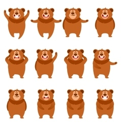 Set of flat bear icons vector image
