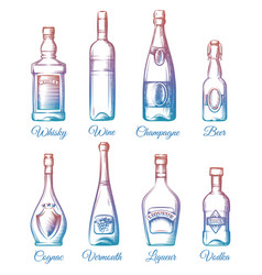 colorful alcohol bottles collection vector image