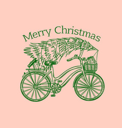 bicycle with a christmas tree spruce vector image
