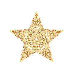 Geometrical abstract floral mosaic star logo vector