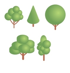 Isometric trees set vector