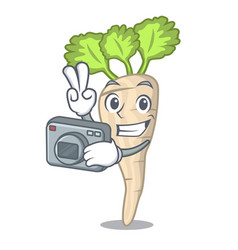 photographer fresh parsnip roots on a mascot vector image