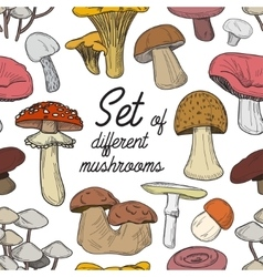 Set of different mushrooms pattern vector image
