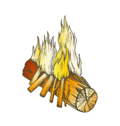 traditional burning wooden stick color vector image