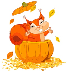 squirrel jumping out of pumpkin vector image vector image