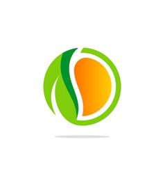 round eco green leaf organic logo vector image