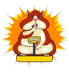 fat funny hamster is standing on the scales vector image
