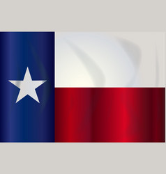 state flag of texas vector image