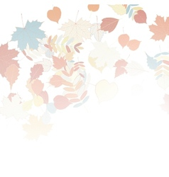 Autumn leaves falling and spinning on white vector image