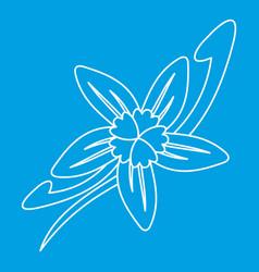 Vanilla flower icon outline style vector