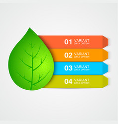 Abstract leaf menu or infographic elements vector
