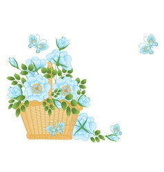 blue roses vector image