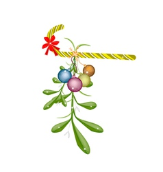 Green Mistletoe with Red Bow and Candy Cane vector image