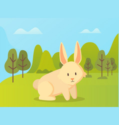 rabbit with long ears sitting green grass vector image