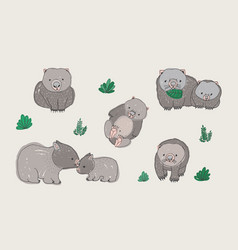 Set cute young wombat in various poses adult vector