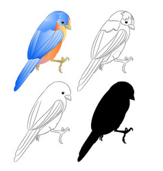 small bird thrush bluebird silhouette and outline vector image