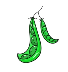 Vegetable peas vector image vector image