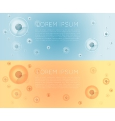 Cells banner vector image vector image