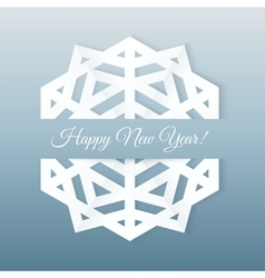 Paper Snowflake Postcard vector image vector image