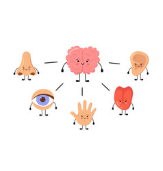 Brain and five human senses organs kawaii vector