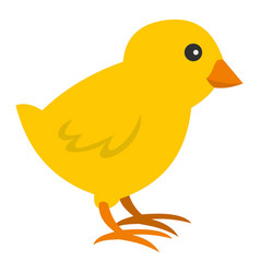 Chick icon isolated vector