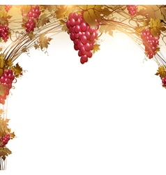 Red grape vine frame vector