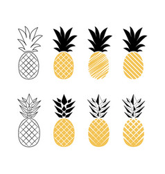 pineapple fruit vector image vector image
