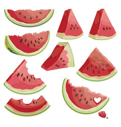 A set of pieces of watermelon collection vector