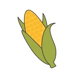 Corn vegetable food vector