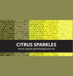 square pattern set citrus sparkles seamless tile vector image