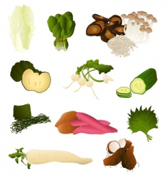 Japanese vegetables vector image vector image
