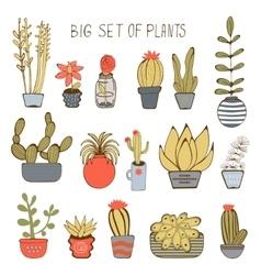 Big colorful set of hand drawn plants vector image vector image