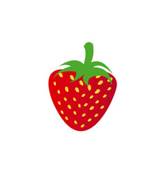Colorful realistic strawberry fruit food vector