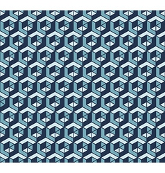 Cube pattern vector image