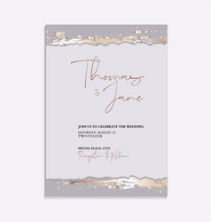 elegant tender pastel chic trendy abstract marble vector image