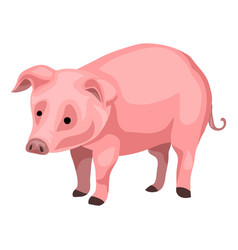 farm pig icon cartoon style vector image