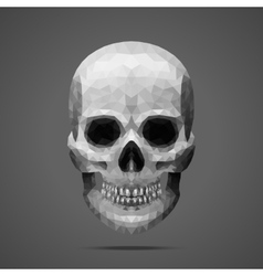 Polygonal gray skull Side light vector