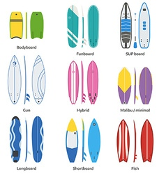 Various Surfboards Set vector