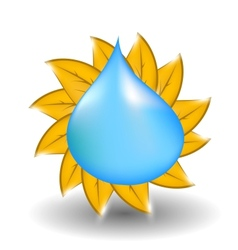 Water drop with yellow leaves in form of sun vector