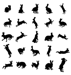 Rabbit silhouettes set vector image