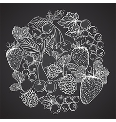 berries in form of circle on chalkboard vector image