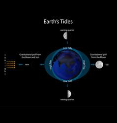 Diagram showing earth tide vector