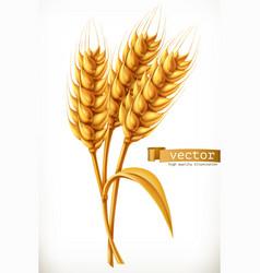 Ear wheat 3d icon vector