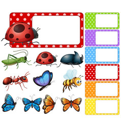 label template with different types of insects vector image